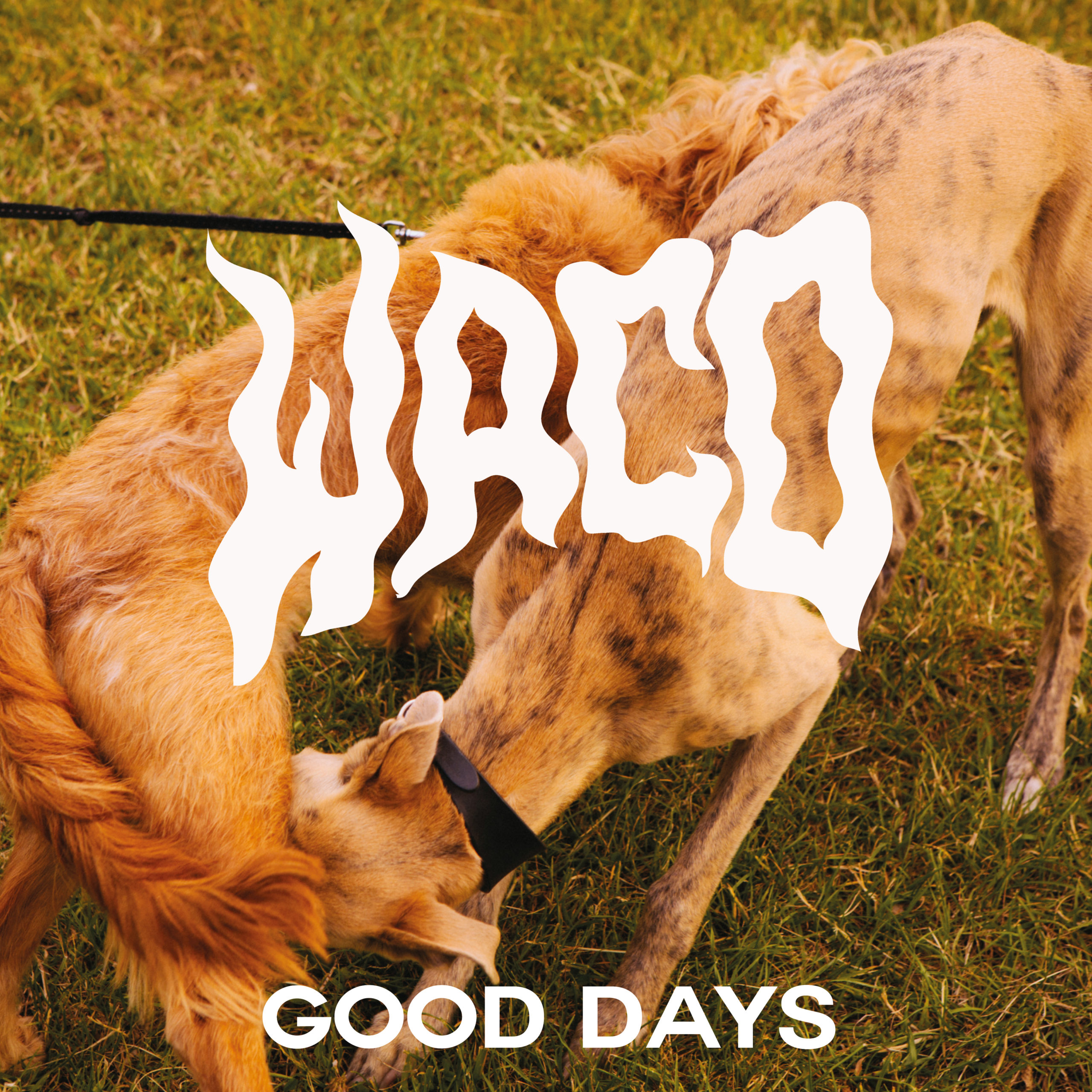 Waco-Good Days